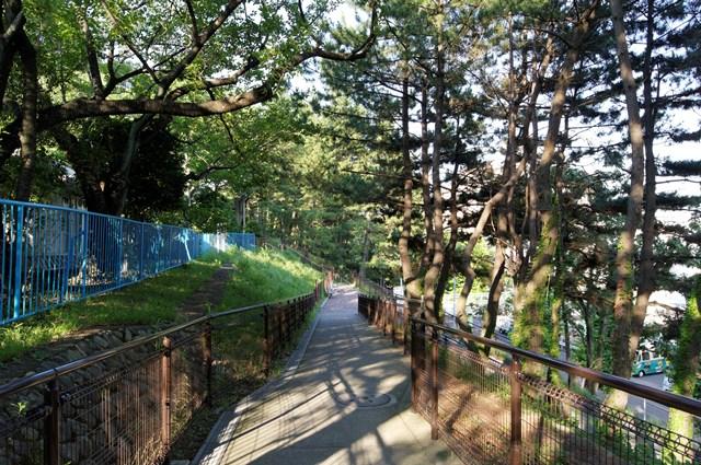 tsurukawadanchi-DSC01741_DxO.jpg