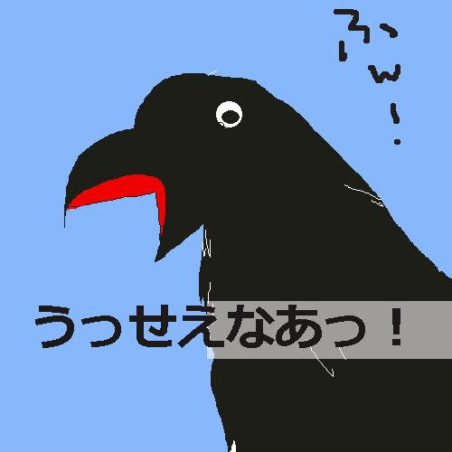 crowgroup3.jpg