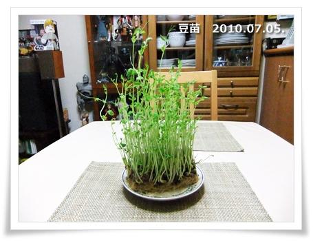 20100715-05.jpg
