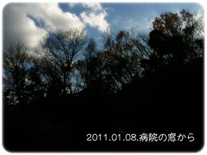 20110425-03.jpg