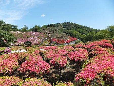 komuroyama-11s.jpg