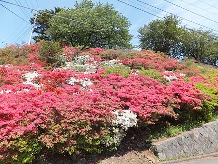 komuroyama-14s.jpg
