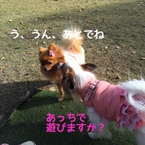 fc2blog_20141212194359c8b.jpg