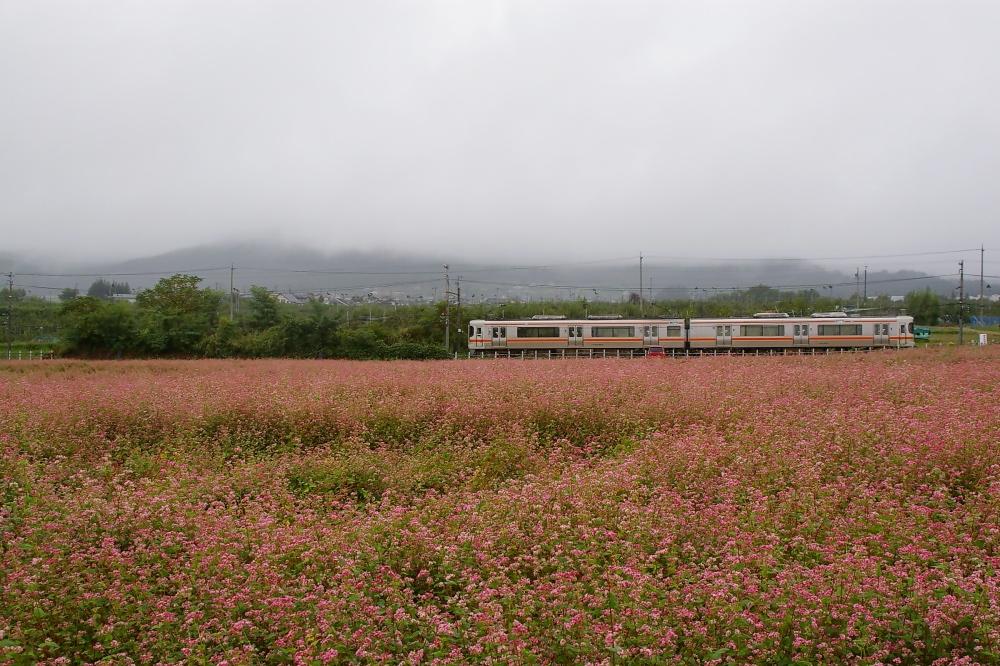 240919d.jpg