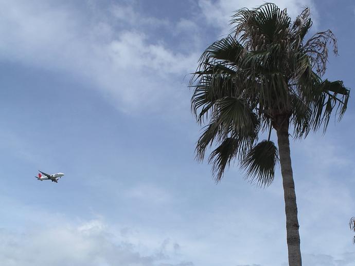 南紀白浜空港へ向かう飛行機(白良浜にて)