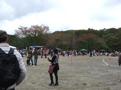 2012_11110015a.jpg
