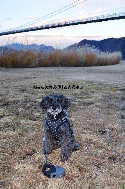 090_20121212230158.jpg