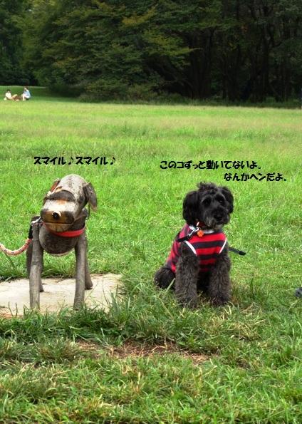 114_20120925090858.jpg