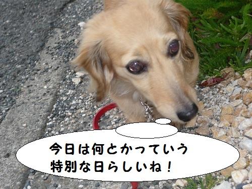 よっしゃ~張り切っていこう~☆☆☆