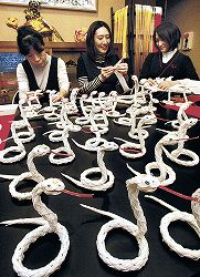 ヘビの水引作りピーク 金沢