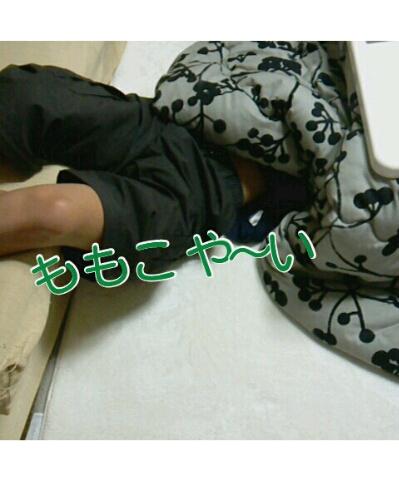 fc2blog_2012112519574649f.jpg
