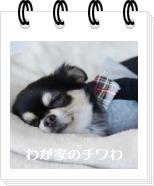 wagachiwa_tag09.jpg