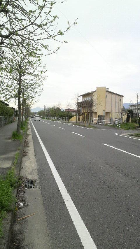 201204201.jpg