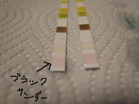 20121109224815b0a.jpg