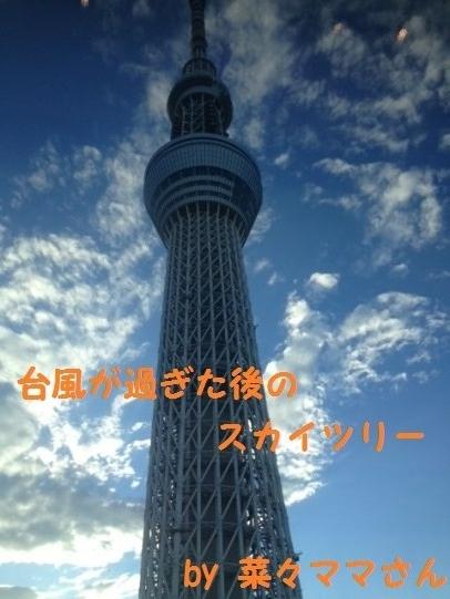 201311281358432e3.jpg