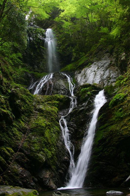 雨乞ノ滝 (徳島県 名西郡 神山町 雨乞ノ滝)