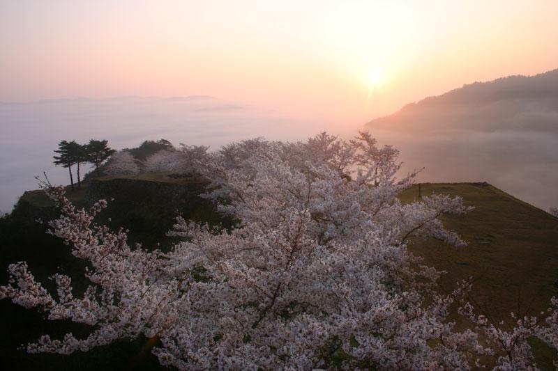 朝陽射す天空の城 (兵庫県 朝来市 和田山町)