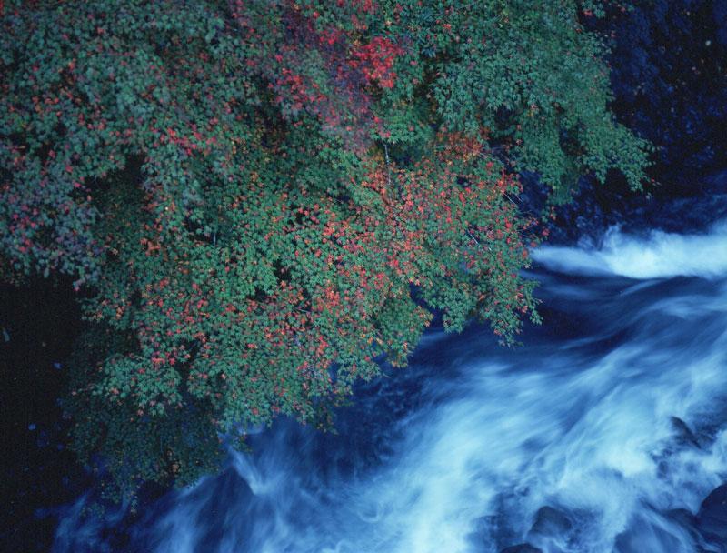 秋の訪れ (徳島県 那賀郡 那賀町 那賀川)