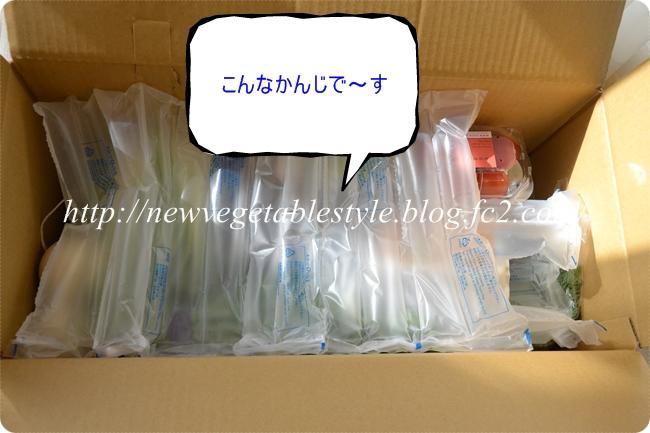 20121130045942477.jpg
