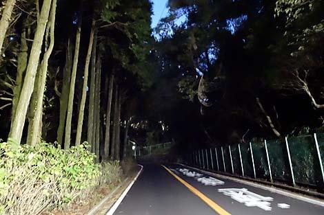 2013himeji_kobe20.jpg