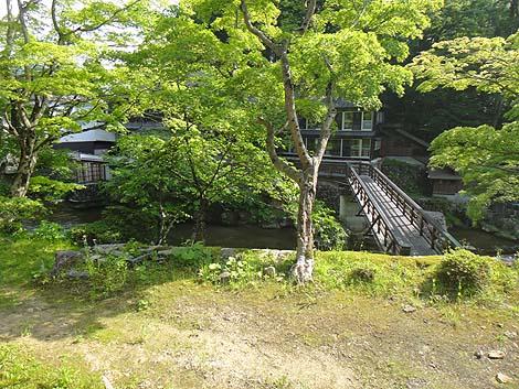 oosawaonsen5.jpg
