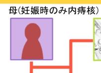 kakeizu2.jpg