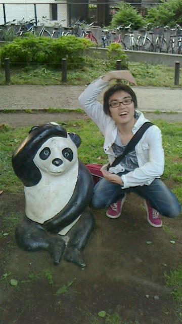 ON AIR#2313 panda?