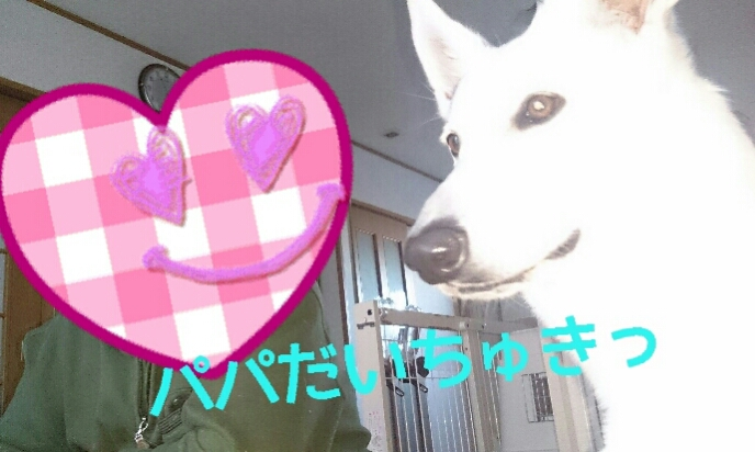 fc2_2014-01-06_00-39-18-166.jpg
