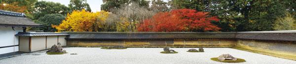 京都4k秋