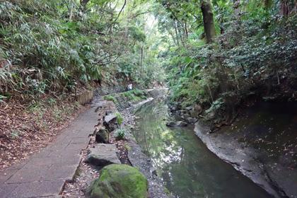 渓谷沿い1