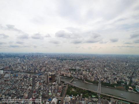 東京スカイツリー絶景