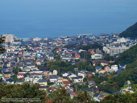 仙元山の山頂から葉山を望む