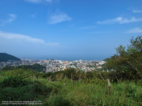 仙元山の山頂から相模湾を望む