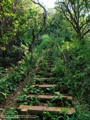 約250段の階段