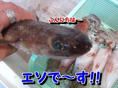 20120814070924939.jpg