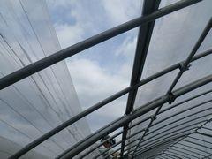 [写真]台風19号が近づきつつある中、本圃ハウスのビニール越しに見上げた空