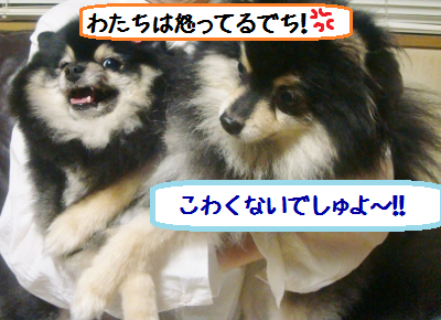201207032357023a4.png