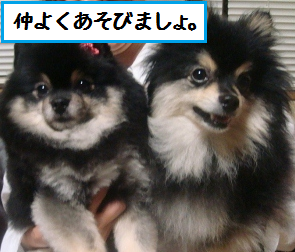 2012070323570361f.png