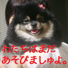 20120703235829afc.png