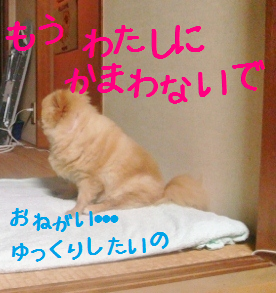 20120703235830127.png