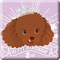mocha_shirai_birthday02_2012-1.jpg
