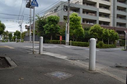 2014-08-30_91.jpg