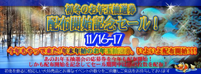 banner_2013winter.jpg