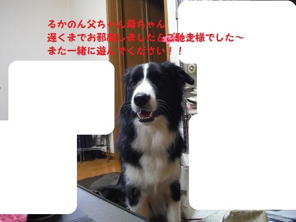 DSCF7715-1.jpg