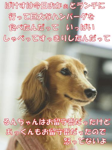141022-01.jpg