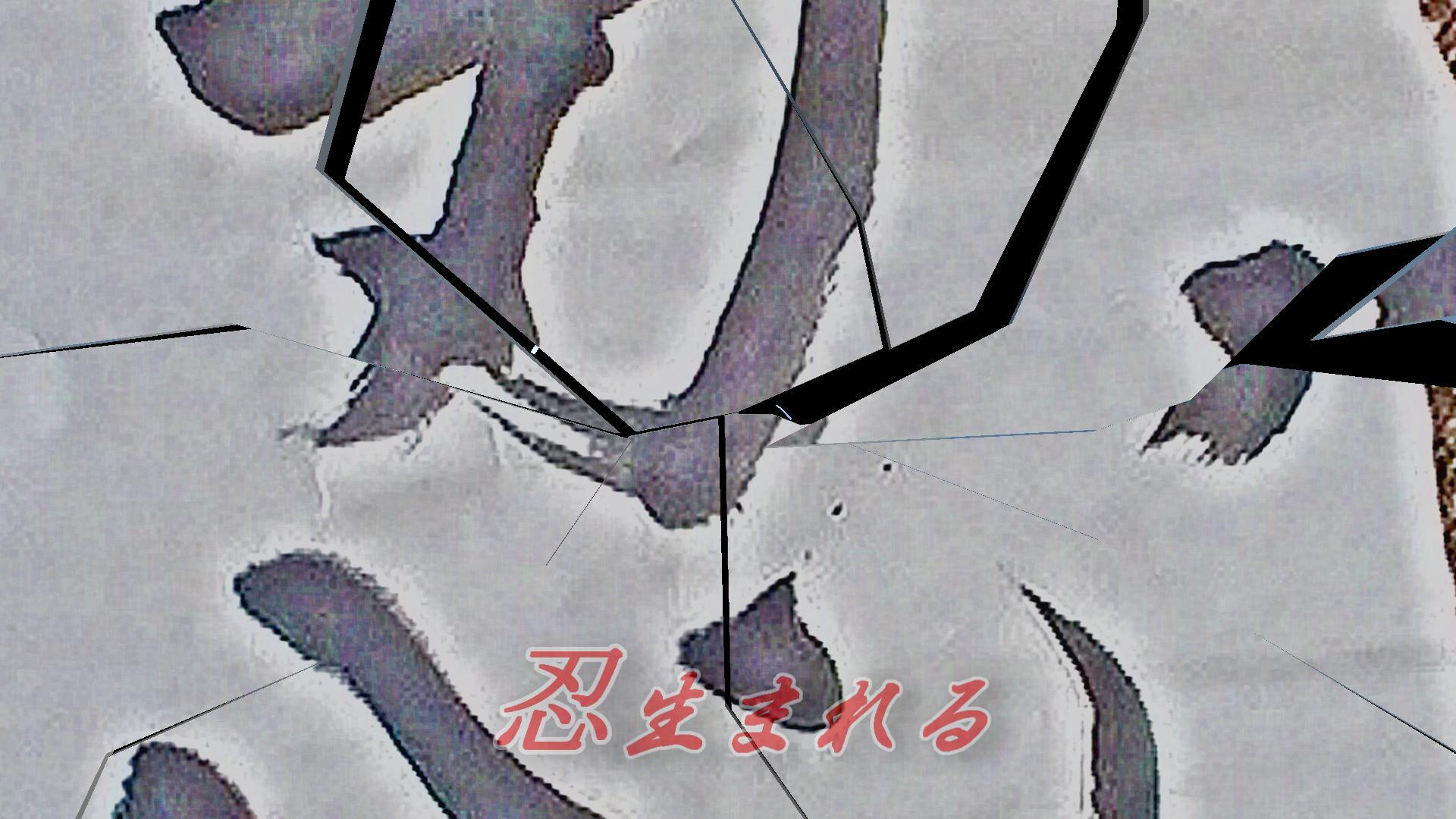 第9弾PV「忍(しのび)」完成☆