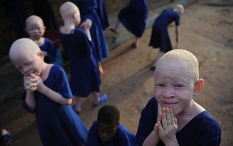 albino_1700699c.jpg