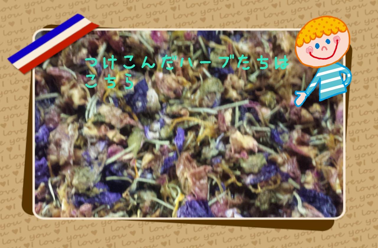 LINEcamera_share_2013-11-15-00-55-08.jpg