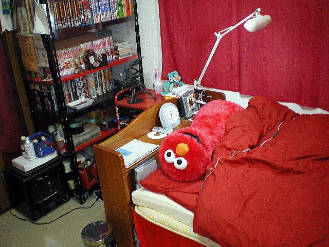 2008-05-292019-03-43akaheya1.jpg