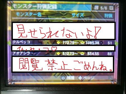 201205021611331cb.jpg